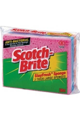 Scotch Brite Sponge Stayfresh Large 3S Packet 3pack